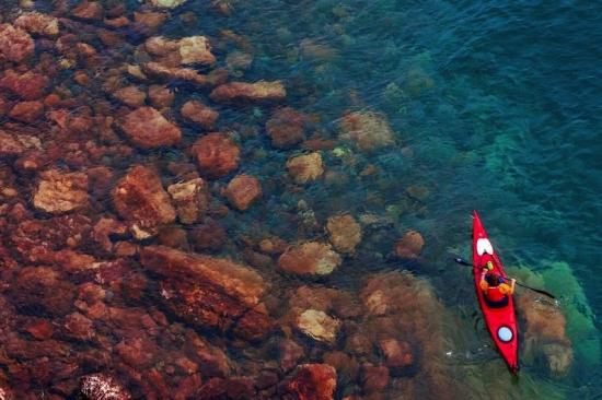 Kayaking-Sydney-Harbour-550x366