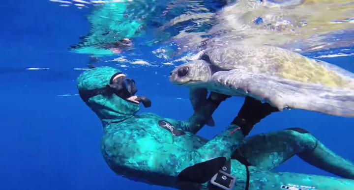 Diver-Saves-Entangled-Sea-Turtle