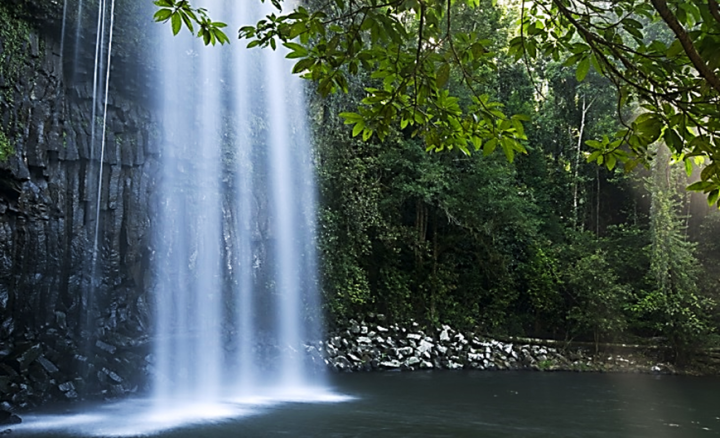 Top 10 Things To Do in Cairns - Atherton Tablelands