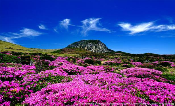 10 Reasons To Visit Korea - Halla Mountain