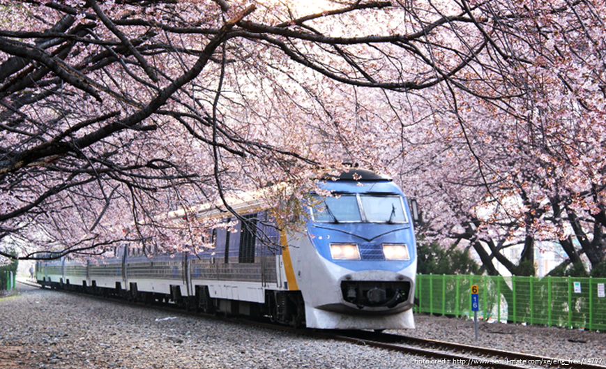 10 Reasons To Visit Korea - Kyeong-Wha Station, Jinhae