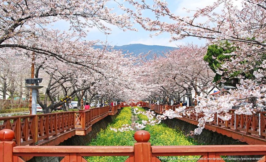 10 Reasons To Visit Korea - Yeojwa Stream