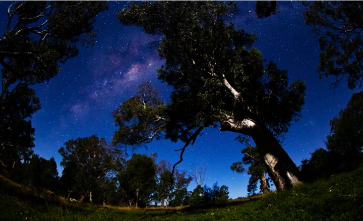 Top 10 Things To Do in Australia - Sleep Under the Stars
