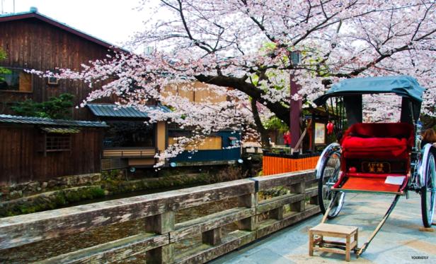 Sightseeing in Tokyo - Akasuka Rickshaw