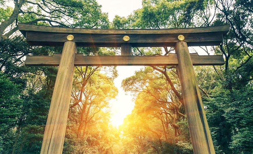 Sightseeing in Tokyo - Meiji Shrine