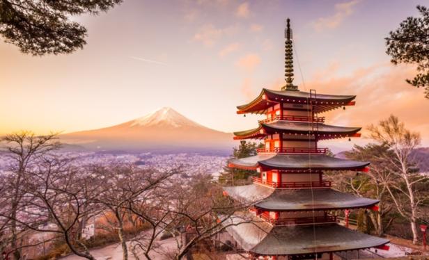 Sightseeing in Tokyo - Mt Fuji