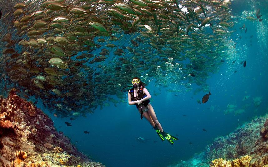 Top 10 Scuba Diving Destinations for Beginners | Sport Diver