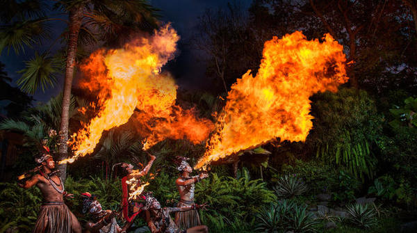 night-at-the-bali-zoo-including-dinner-experience-in-gianyar-253627