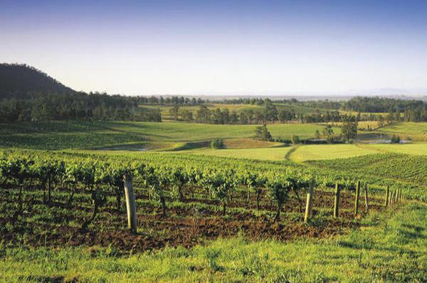 wine tasting romantic tour sydney