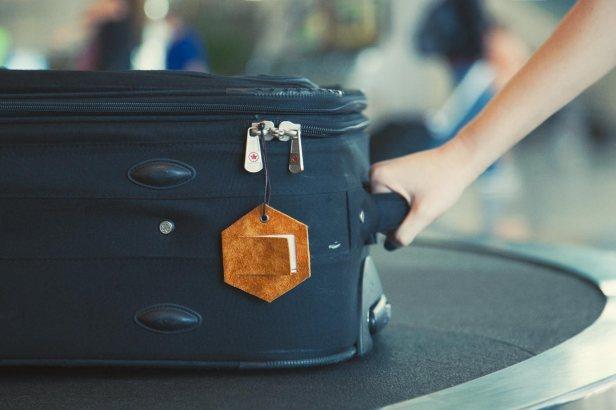 10311-Leather-Luggage-Tag-Main