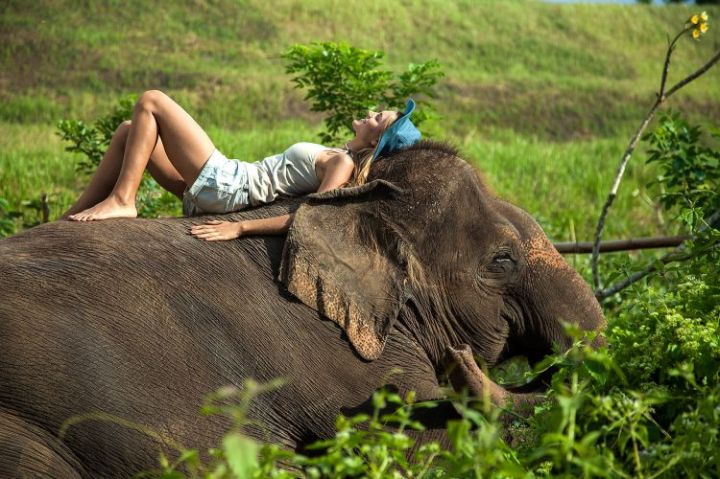 mahout_for_a_day_11_jnerq4